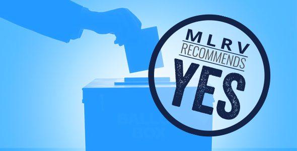 Proposal 3: Promote the Vote